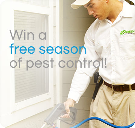 Get A Free Season of Pest Control